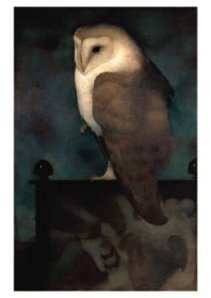 Jan  Mankes  Barn Owl